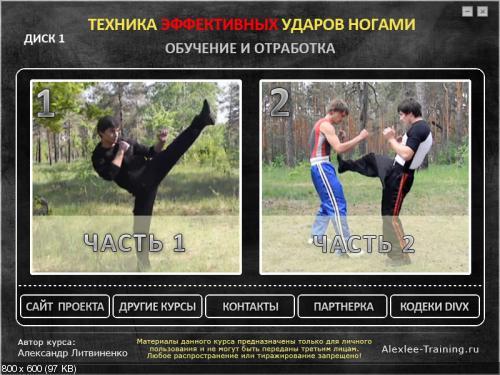 А. Литвиненко - Техника эффективных ударов ногами
