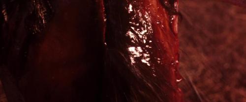 Зловещие мертвецы: Черная книга / Evil Dead (2013) BDRip