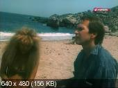 Дикий пляж  (1990 / 480p AVC)