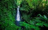 Фотографии красивой природы