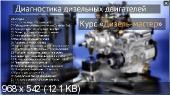 Дизель-мастер (2014) Видеокурс