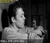 491 / 491 (1964) DVDRip-AVC | MVO