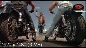 Невозмутимый / Холодный как камень / Без эмоций / Stone Cold (1991) BDRemux 1080p | DVO | AVO