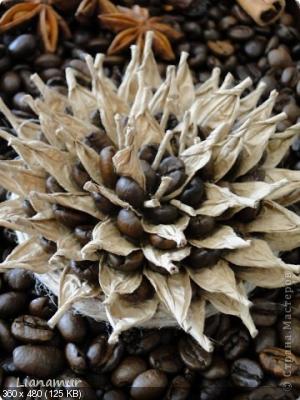 Цветы из кофейных зерен и шпагата – мастер-класс    523081f4d9e74729c7889fc7fe21f47f