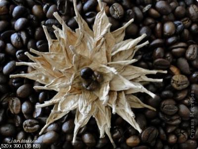 Цветы из кофейных зерен и шпагата – мастер-класс    0a0f842ac094c42ac8cd8a96d48202e9