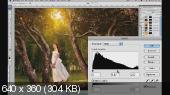 Обработка фотографий в стиле RARINDRA (2013) Видеокурс
