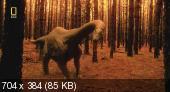 Пути эволюции / Evolutions [1-3 серии из 3] (2008) HDTVRip