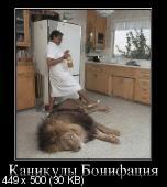 Демотиваторы '220V' 05.11.14