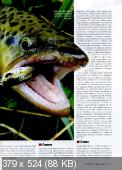 Рыбачьте с нами (№11 / 2014)