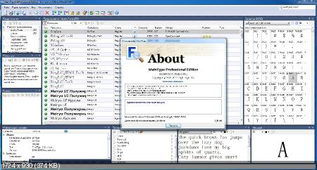 High-Logic MainType 6.0.0 Build 951 (Русификатор)