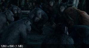 ������� �������: ��������� / Dawn of the Planet of the Apes (2014) BDRip 720p | DUB | ��������