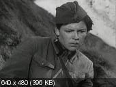 Боевой киносборник  (1941) DVDRip