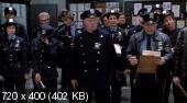 ���� ����� ������ / Fort Apache The Bronx (1981) DVDRip | DVO