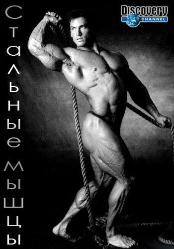 Discovery. Стальные мышцы / American Muscle [1-8 серии из 8] (2014) HDTVRip от GeneralFilm