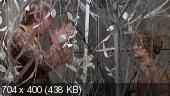 http://i66.fastpic.ru/thumb/2014/1225/ab/d54daa831327849a930df96de0dfd3ab.jpeg