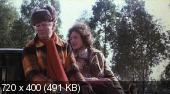 Жить ради любви / Conviene far bene l'amore (1975) DVDRip | AVO