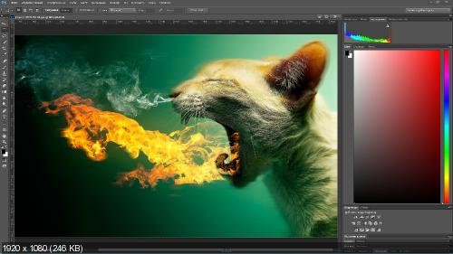 Adobe Photoshop CC 2014.2.2 (20141204.r.310) RePack by D!akov (31.12.2014) (2014) [Multi / Rus]
