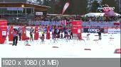 ������ �����. ����� ���� 2014-15. Tour De Ski. ���������� (��������). �������. ����� �������������. �������� [04.01] (2015) HDTV 1080i