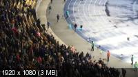 Футбол. Лига Европы. 2014/15. 1/16 финала. Ответный матч. Динамо (Украина) - Генгам (Франция). Фанаты, драка [26.02] (2015) HDTV 1080i