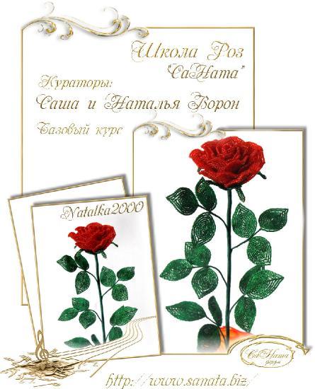 Школа Роз. Выпуск Базового курса 043e517f851e6676db65928b0dc3efb5