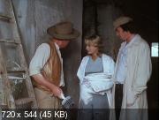 Экспериментатор (Солнце, сено, ягоды) (1984) DVDRip
