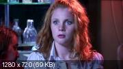 От тюрьмы и от сумы (2008) WEB-DL (720p)