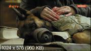 Пёс [1 сезон] (2015) DVB от Files-x