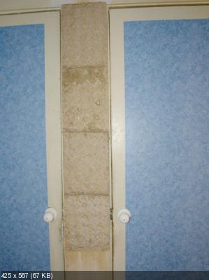 Декоративное оформление стен  Bc09f4e42ae874d129107a6121975487