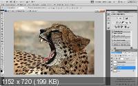 Photoshop. ����� ��������� ���������� 2.0 (2015/PCRec/Rus)
