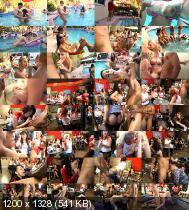 Dancing Bear 25 (2015/DVDRip)